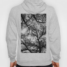 Branches 4 Hoody