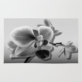 Orchid in Black and White A537 Rug