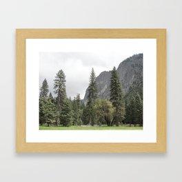 Yosemite Valley 11 Framed Art Print
