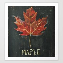 Fall Red Maple Leaf Black Background Art Print