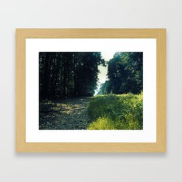 Orange Grove Framed Art Print