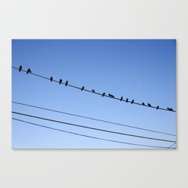 Tweet Canvas Print