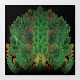 """""""Emerald and black peacock"""" Canvas Print"""