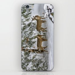 Keeping undercover iPhone Skin
