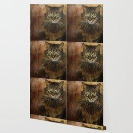 Cat 2 Wallpaper