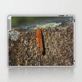 Cliffhanger Laptop & iPad Skin