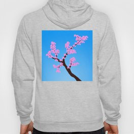 A sign of Spring Hoody