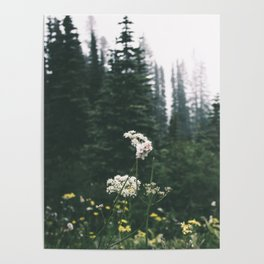 Forest Blooms Poster