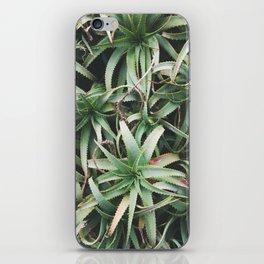 Aloe, mate. iPhone Skin
