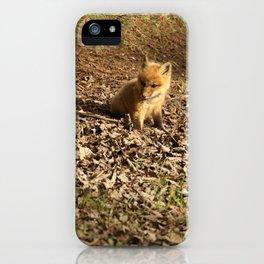 Baby fox kit iPhone Case