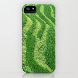 Longji Rice Terraces iPhone Case