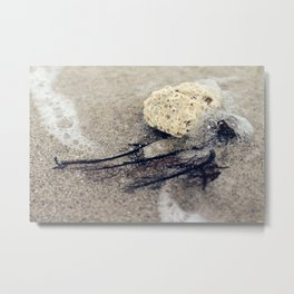 sea things Metal Print