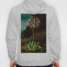 The American Cowslip Flower : New Illustration Of The Sexual System Hoody