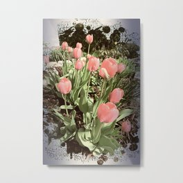 tulips in my garden Metal Print