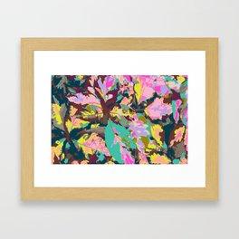 Claro de Luna Framed Art Print