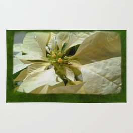 Pale Yellow Poinsettia 1 Blank P1F0 Rug
