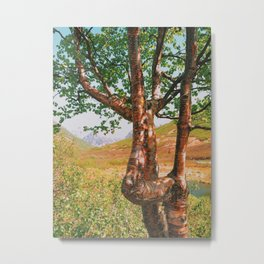 Strangely beautiful Alaskan Tree Metal Print
