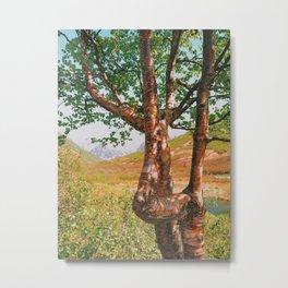 Strangely beautiful Alaskan Tree Metal Print