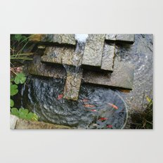 Fountain and Koi Canvas Print