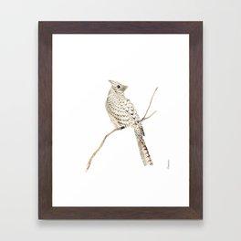 Winter Cardinal, collage Framed Art Print