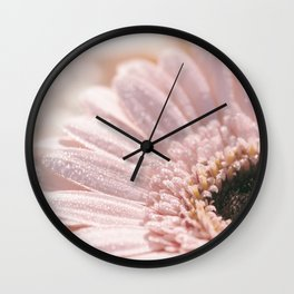 Light Pink floral Daisy Flower with water droplets- flowers Wall Clock