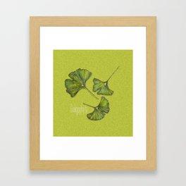 ginkgophyta Framed Art Print