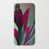 burgundy iPhone & iPod Cases featuring Burgundy by Whittle Photography