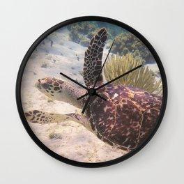 Grand Cayman Turtle Wall Clock