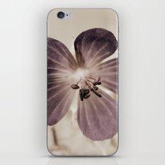 Melancholia 5073 iPhone & iPod Skin