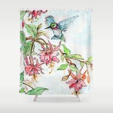 Honeysuckle Hummingbird