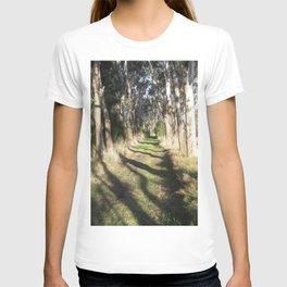 Shadowy Path T-shirt