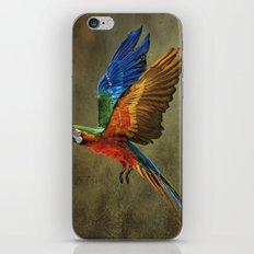 A Flying Rainbow iPhone & iPod Skin