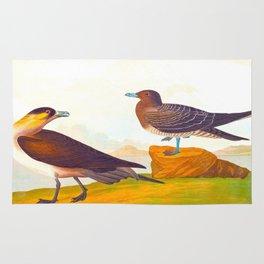 Richardson's Jager Bird Rug