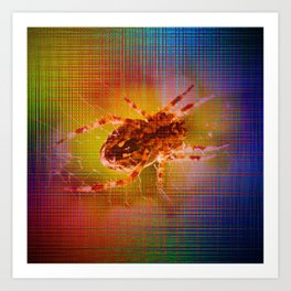 Moments Spider - Abstract Art Print