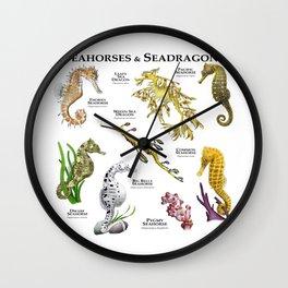 Seahorses and Seadragons Wall Clock
