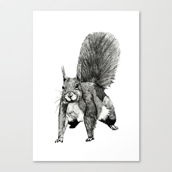 Pesky Squirrel Canvas Print