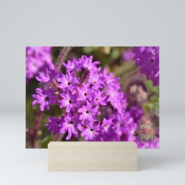Sparkle Purple Petals by Reay of Light Photography Mini Art Print