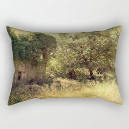 Vintage old forgotten town Rectangular Pillow