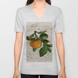 Shabby French botanical print tangerine clementine mandarin orange Unisex V-Neck