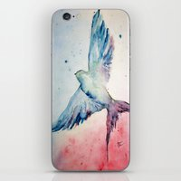 flight iPhone & iPod Skins featuring Flight by Megan Hunter