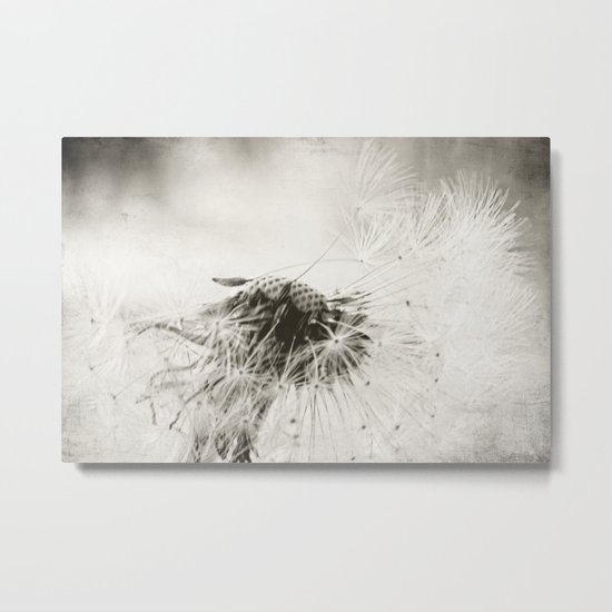 wind swept Metal Print