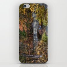 the Stone Bridge iPhone & iPod Skin