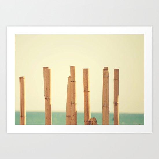 Salitre Art Print