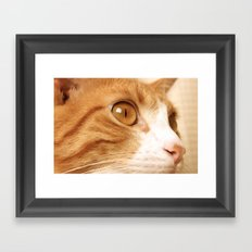 My cat Framed Art Print