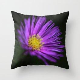 Purple Aster Throw Pillow