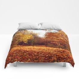 lost in the woods Comforters