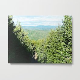Between Trees and Mountains Metal Print