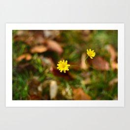 October Wildflowers Art Print