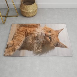 Purebred red Maine Coon cat lying on the floor at home Rug