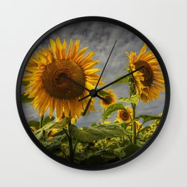 Sunflowers Blooming in a Field Wall Clock